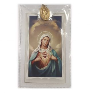 Our Lady Prayer Card