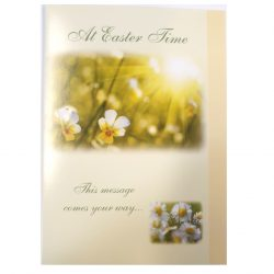 Daisy Easter Cards