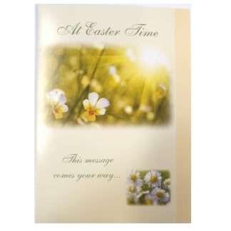 Daisy Easter Cards