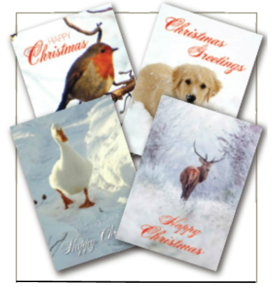charity christmas cards animal christmas cards christmas cards - Animal Charity Christmas Cards