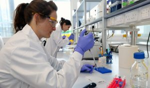 Cancer research- lab testing