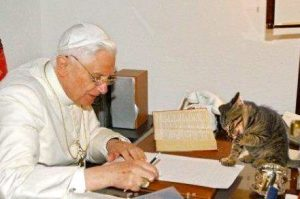 Pope Benedict and chico the cat